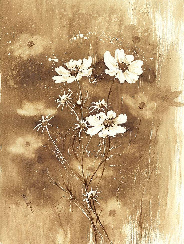 Kosmosy - watercolour painted with coffee - Maria Roszkowska