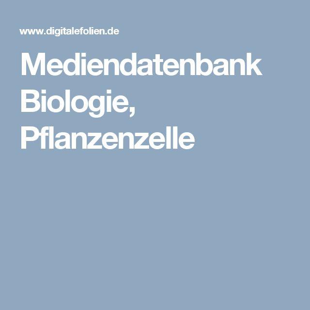 Mediendatenbank Biologie, Pflanzenzelle