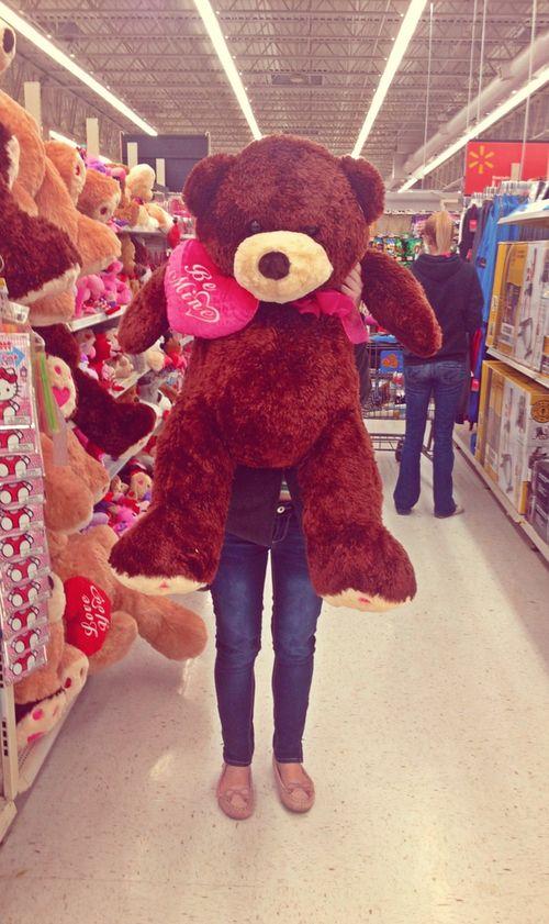 Giant Teddy Bears Tumblr Google Search Bear