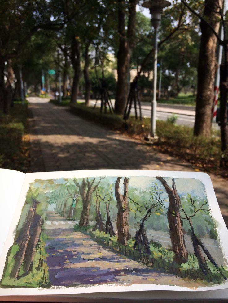 林口,公園路 1.5hrs
