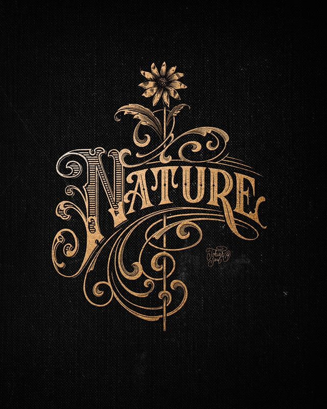 Heritage Type Co On Instagram With A Greater Sense Of Understanding Comes A Greater Sense Of Wond In 2020 Lettering Design Vintage Lettering Vintage Graphic Design