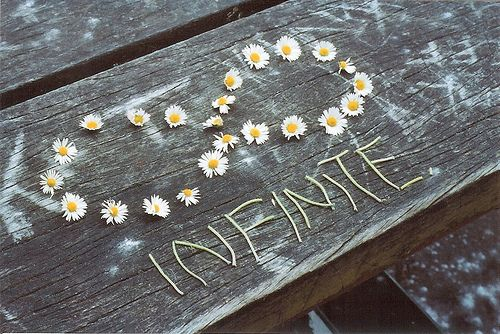 Infinite: Infinite, Life, Inspiration, Quotes, Beautiful, Things, Flower, Infinity, Photography