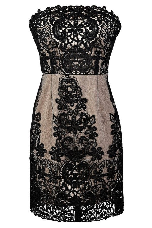 Dark Night Black and Nude Lace Sheath Dress  www.lilyboutique.com