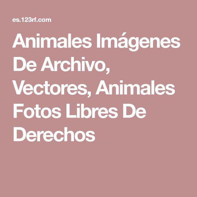 Animales Imágenes De Archivo, Vectores, Animales Fotos Libres De Derechos