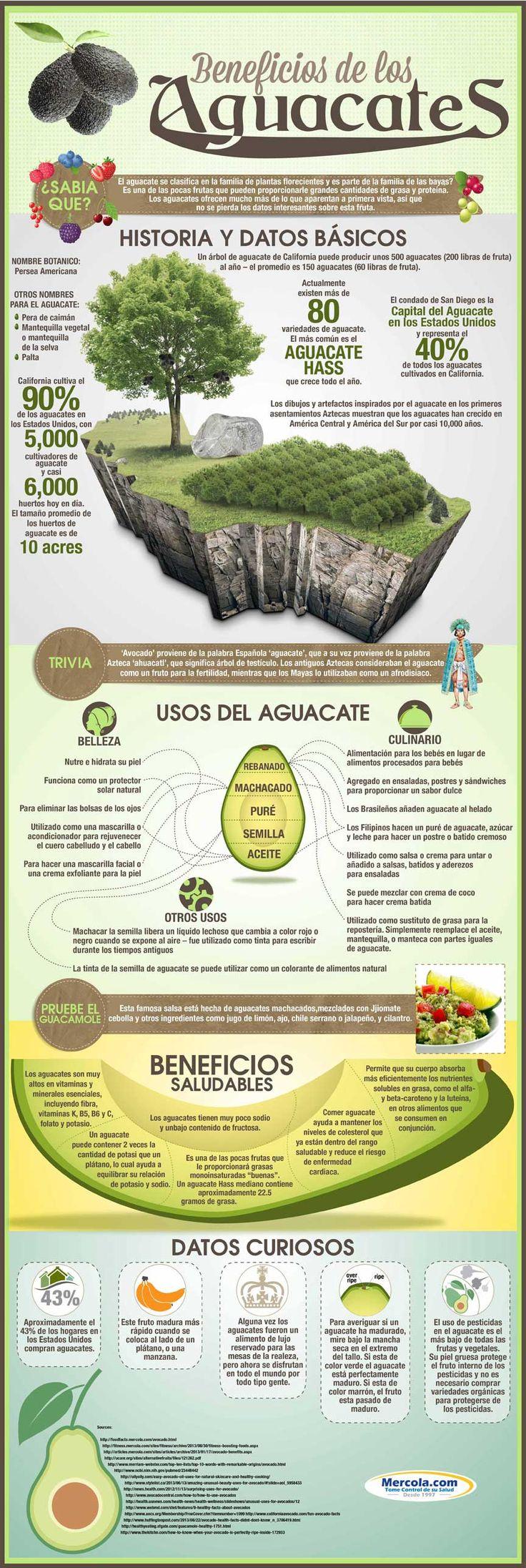 """Descubra los usos y beneficios del aguacate a través de """"Los Beneficios del Aguacate"""" infografía, y conozca porque esta comida debe formar parte de su dieta. http://espanol.mercola.com/infografias/beneficios-y-usos-del-aguacate.aspx"""