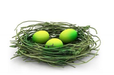 25% OFF Easter Basket Ideas!