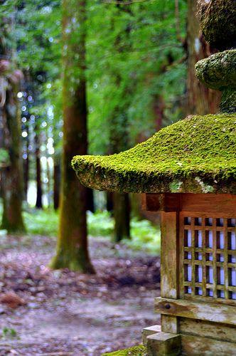 Zen garden, Kyoto, Japan.