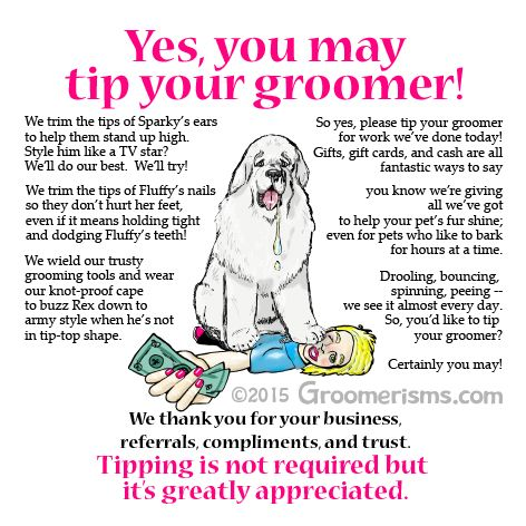 How Much To Tip Mobile Dog Groomer