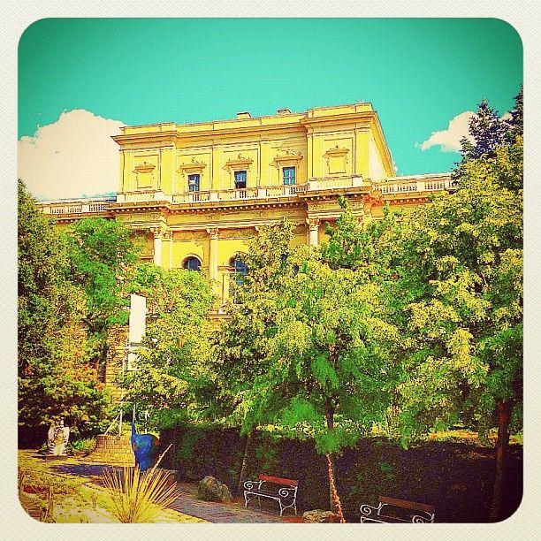 @balazsroth Secret garden in the City Center
