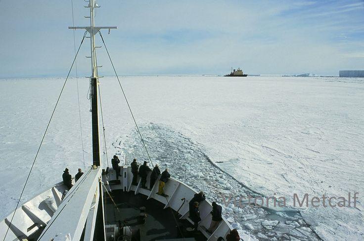 ship to antarctica - Google Search