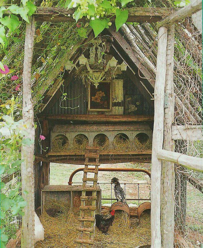 omg so perfect ! Love this chicken coop   Robin Brown's of Magnoilia Pearl.
