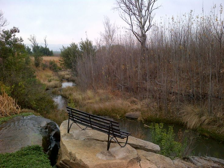Bench by the dam, along the river