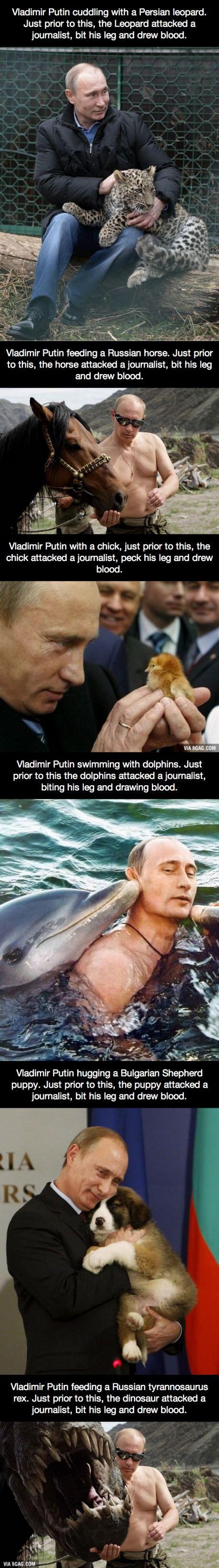 Vladimir Putin and His Animal Friends