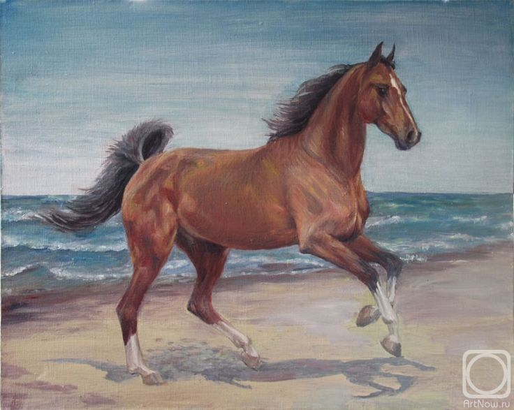 Oil on canvas by Svetlana  Hunskaya