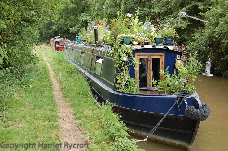 Oxfordshire narrow boat - When you live on a boat your garden has to live there too!