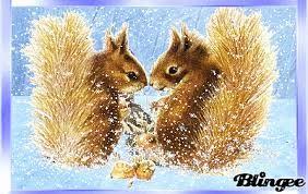 Bildergebnis für eichhörnchen im winterschlaf