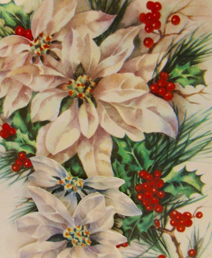 Vintage Christmas Card. Holiday Poinsettias. Retro Holiday.