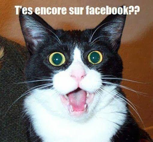 Citations et Panneaux Facebook à partager: Citations humoristiques