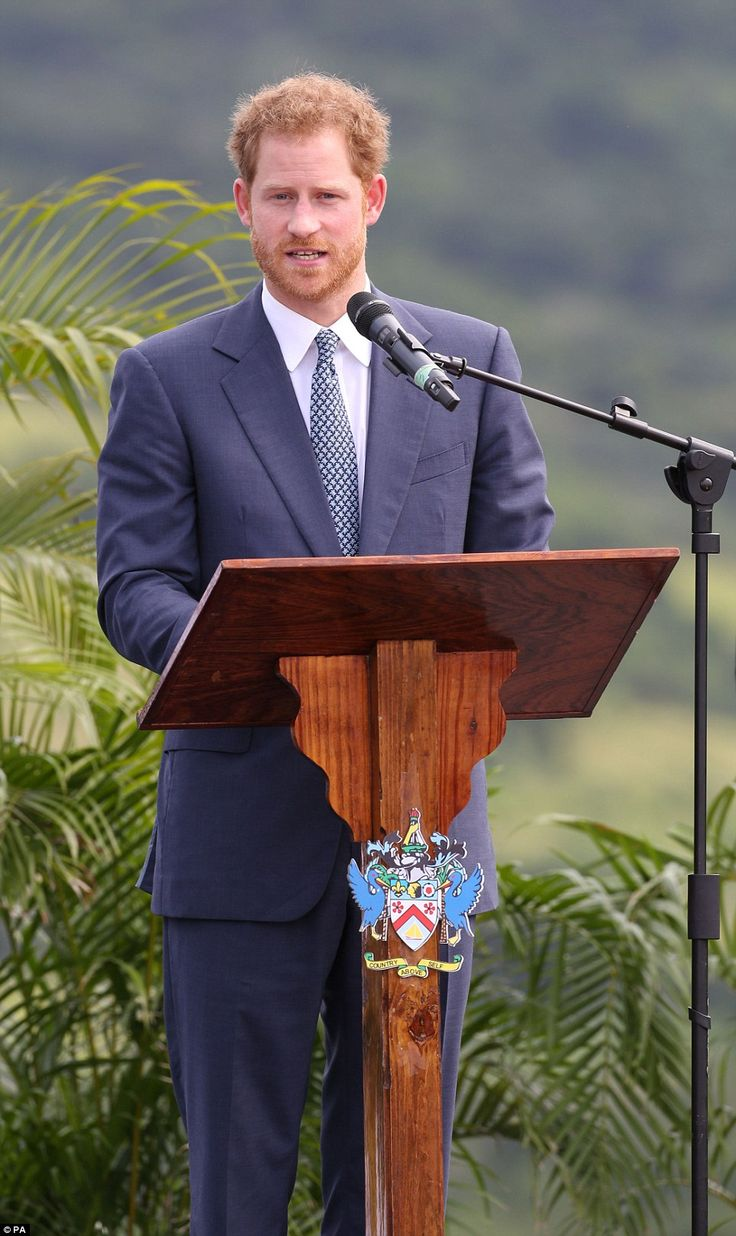 Prince Harry, dressed in a suit and tie despite the heat, also made a speech to the crowd ...