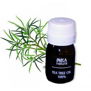 Olio essenziale di tea tree - proprietà e benefici