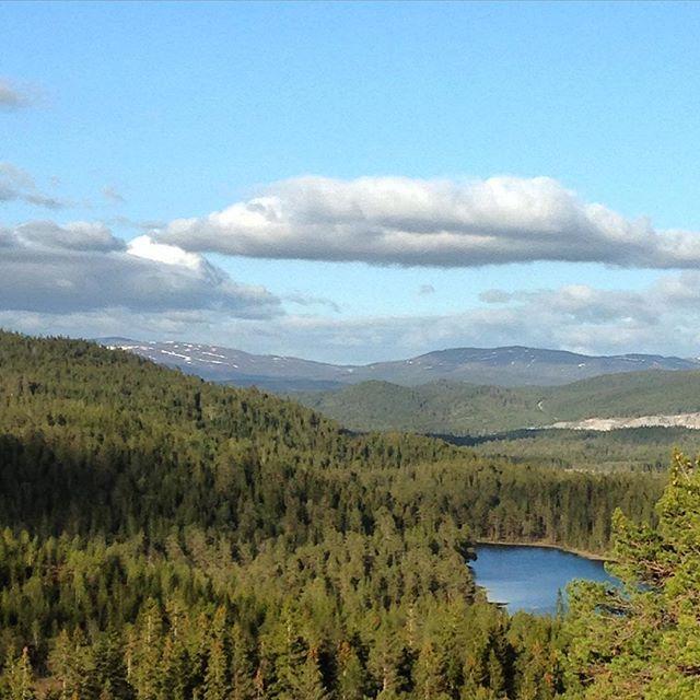 #view #utpåtur #topptur #hanekammen #verdal #innherred #vår #utsikt #i #iphoneonly #instagood #turansomtælle #norway #norsknatur