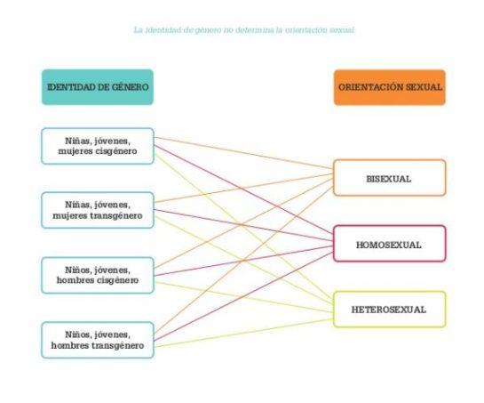 Cartilla del ministerio de Educación: Este es el documento de Naciones Unidas sobre no discriminación sexual en las escuelas | Actualidad | Caracol Radio