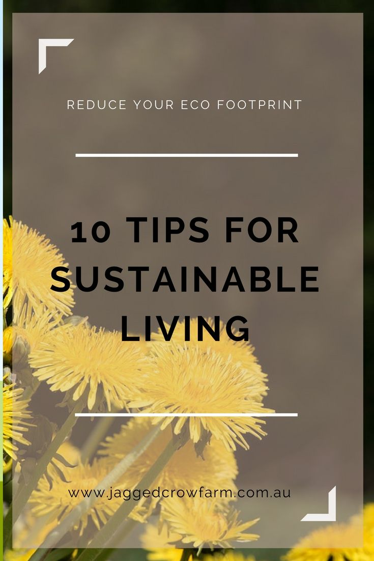 Sustainable Living | Sustainability | Green Life | Self Sufficiency