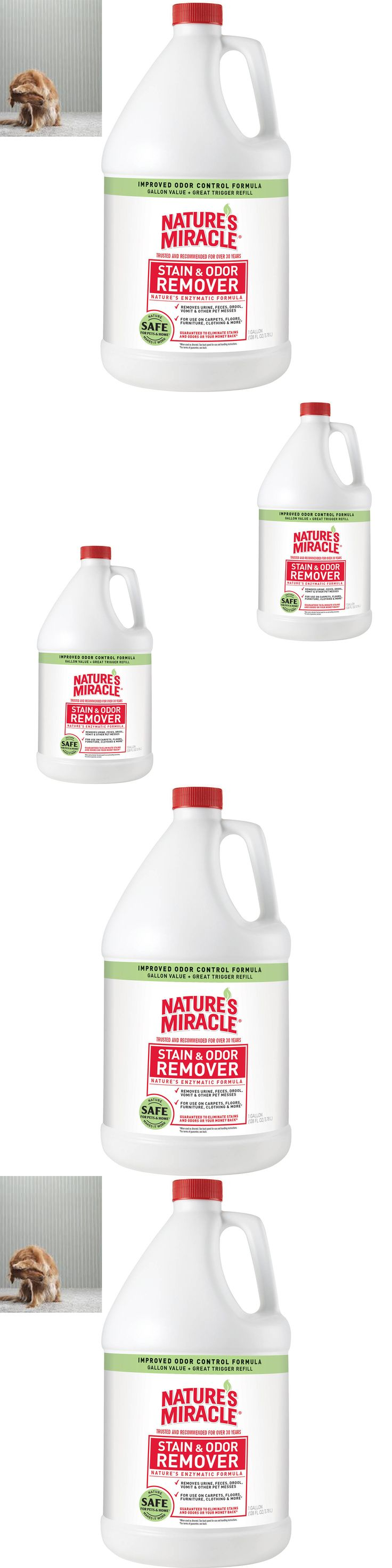 Odor and Stain Removal 134755: Odor Stain Remover Miracle Natures Gallon Pour Pet Deep Shampo Advanced Cleaner -> BUY IT NOW ONLY: $34.68 on eBay!