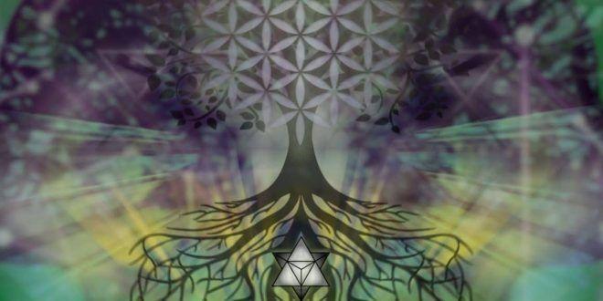 Sámánok bölcsessége – Útmutató a pszichedelikus gyógyításhoz