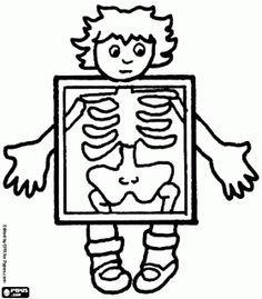 kleurplaat lichaam kind - Google zoeken