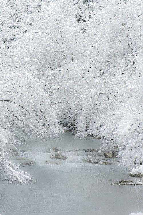 Softness of Winter