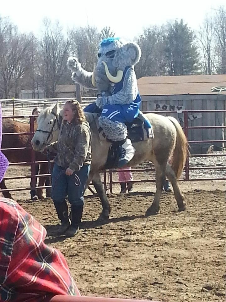 We have a great mascot. :) He was riding this horse at one of the agencies today.