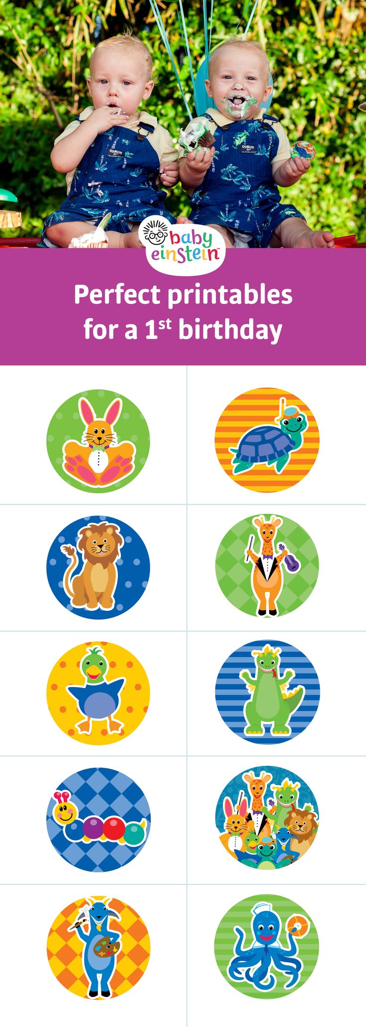 97 best baby einstein 1st birthday images on pinterest baby