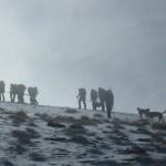 Nueva convocatoria de Acción Sierra Nevada, el 4 de Noviembre, para continuar con los trabajos de restauración en el Refugio del Caballo.