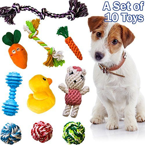 The 10 Most Popular Dog Toys By Amzpets Squeaky Toys Https