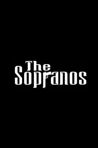"""The Sopranos - I was always very aware of the Mafia's presence in Jersey when I was growing up...a grade school classmate's father being arrested and listed as a """"soldier"""" in a crime family...me and my best friend ate the age of 10 sneaking thru the woods and climbing a fence to get onto a great """"forest"""" to explore. And being caught and escorted off the estate by Tony Boy's """"security men"""""""