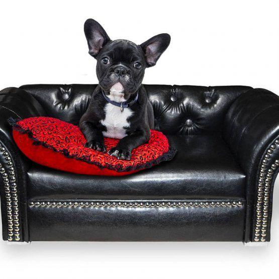 Designer Hundesofa York Lux