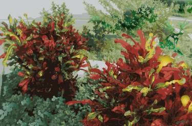 Bleeding Bushels