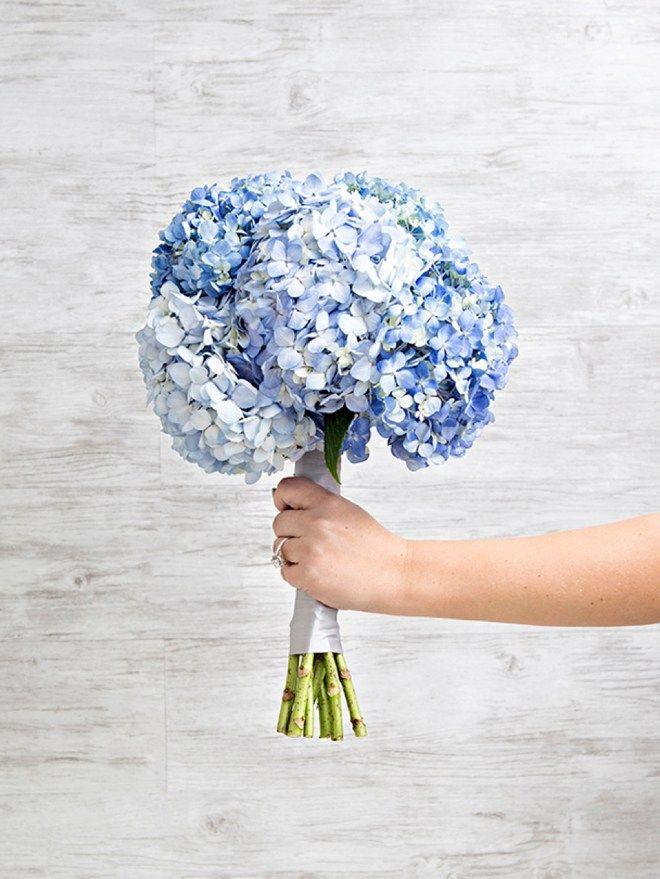 Wedding Flower Power The Heavenly Hydrangea Wedding Flower Guide Blue Hydrangea Wedding Hydrangea Bouquet Wedding