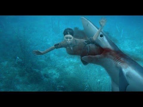 SHARK ATTACK - Great white shark attacks, a rare #sharkattack video