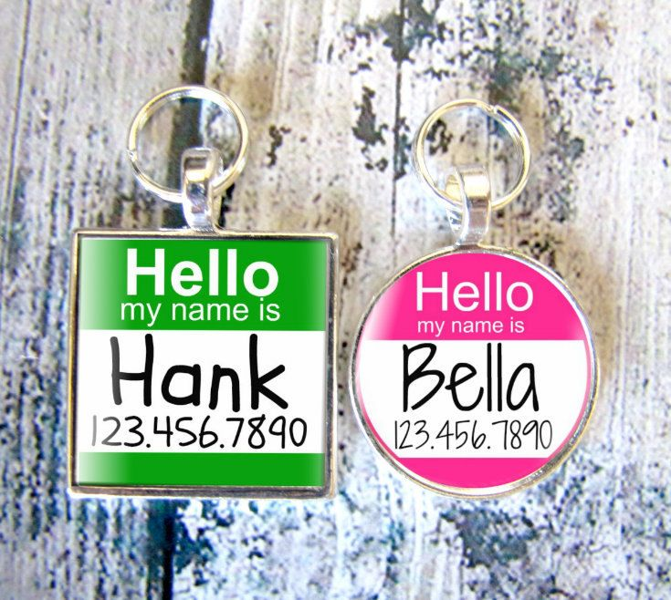 "The Original ""Hello My Name Is"" Silver Pet ID Tag -As Seen In Modern Dog Magazine. $9.99, via Etsy."