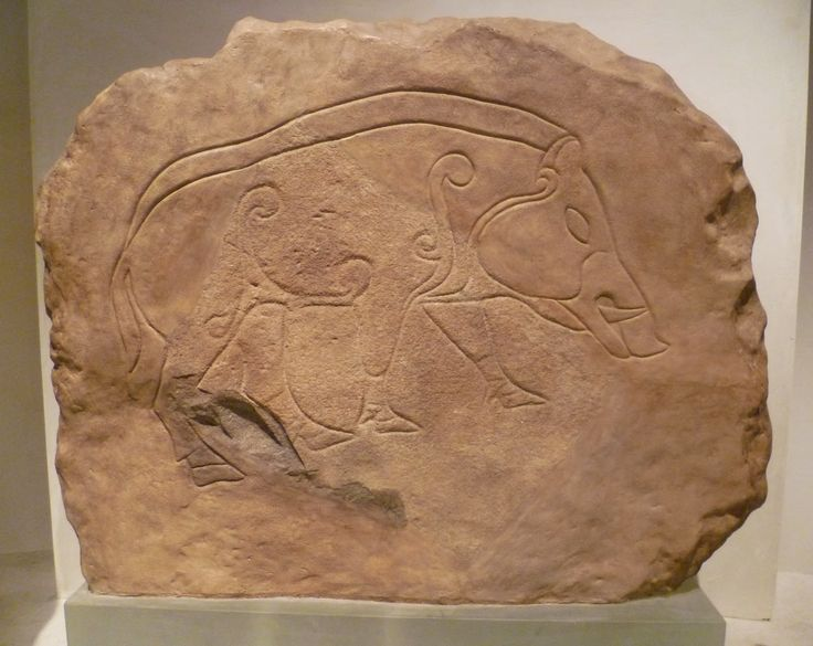 Kim Traynor photo Dores Stone Pictish Boar