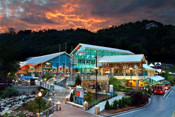 Ripley's Aquarium in Gatlinburg, TN. One of the best in a beautiful setting.
