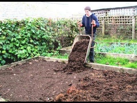 Raised Bed Gardening For Beginners Site Selection 400 x 300