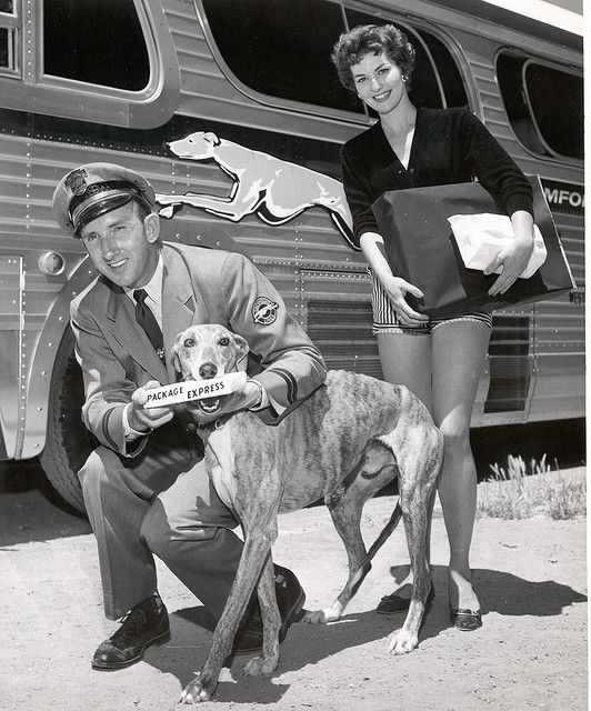 Greyhound Package Express...precursor to Federal Express, the Greyhound Bus Company was owned by Fred Smith's family(founder of FEDEX)