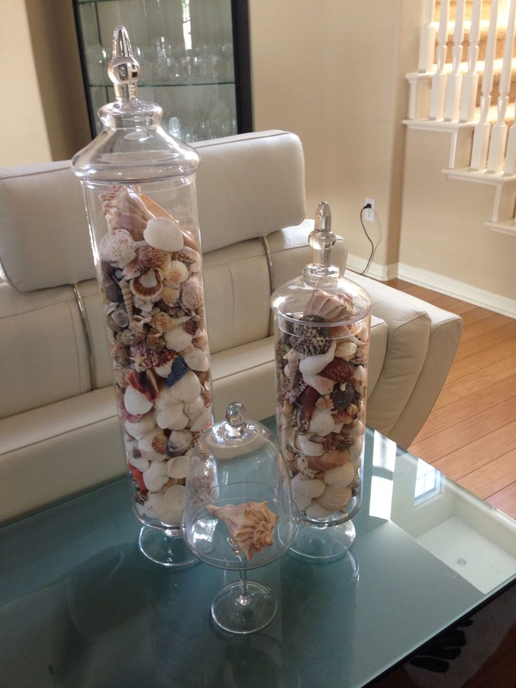 1000 images about seashell display ideas on pinterest for Ideas for displaying seashells
