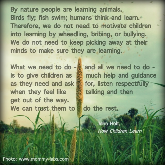 By nature people are learning animals. Birds fly, fish swim, humans think and learn....John Holt-