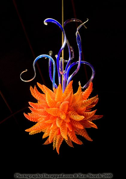 Dale Chihuly glass work suspended from an outdoor pavilion ceiling by © Ken Storch, via photographyuncapped.com