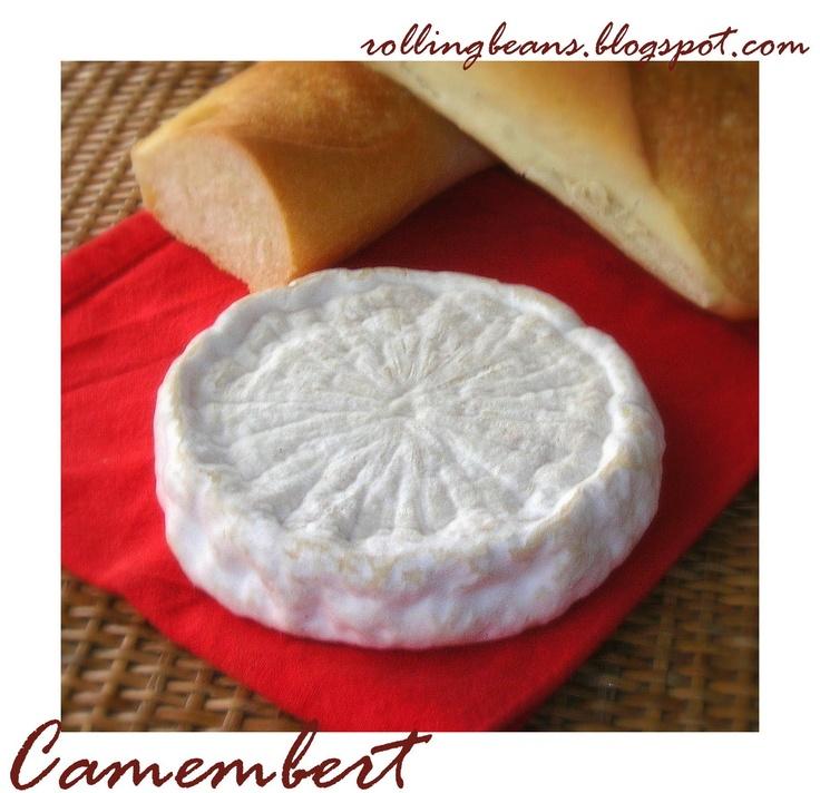 Come fare il camembert in casa Homemade camembert cheese #formaggio #camembert #autoproduzione come fare il formaggio in casa