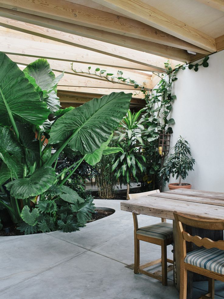 Gallery of Artist Studio in Sonoma / Mork-Ulnes Architects - 2